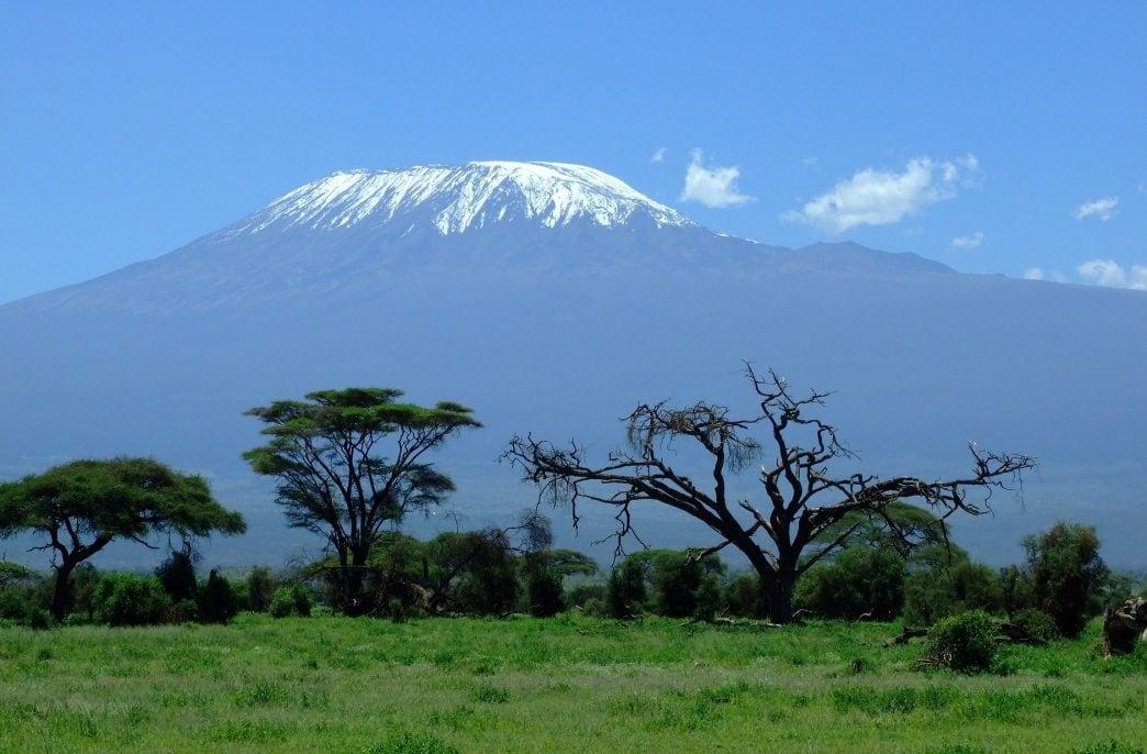 В Кении разрастается скандал из-за импорта агрохимикатов