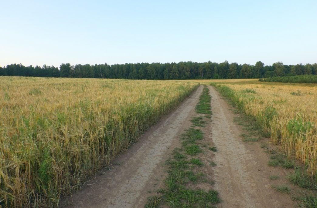 «ФосАгро-Регион» откроет новый дистрибьюторский центр в Татарстане
