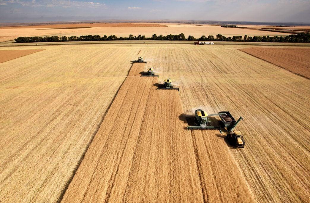 Виталий Бузу: «Платформа для агробизнеса должна быть похожа на нейронную сеть, где все узлы связаны между собой»