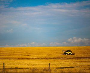 В Канаде построят завод медленно растворимых удобрений