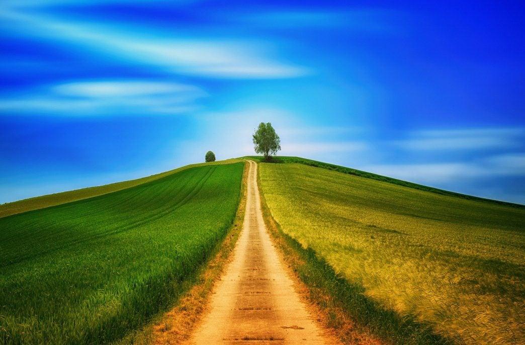 «Дамате» повысит культуру земледелия