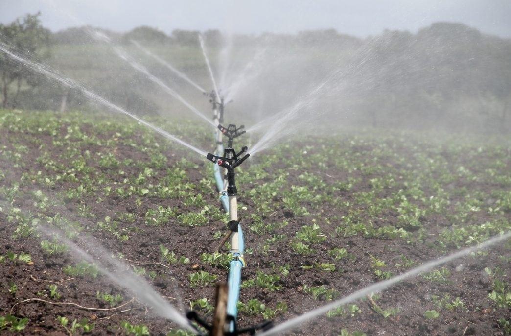 В Ставропольском крае увеличатся площади орошаемых полей