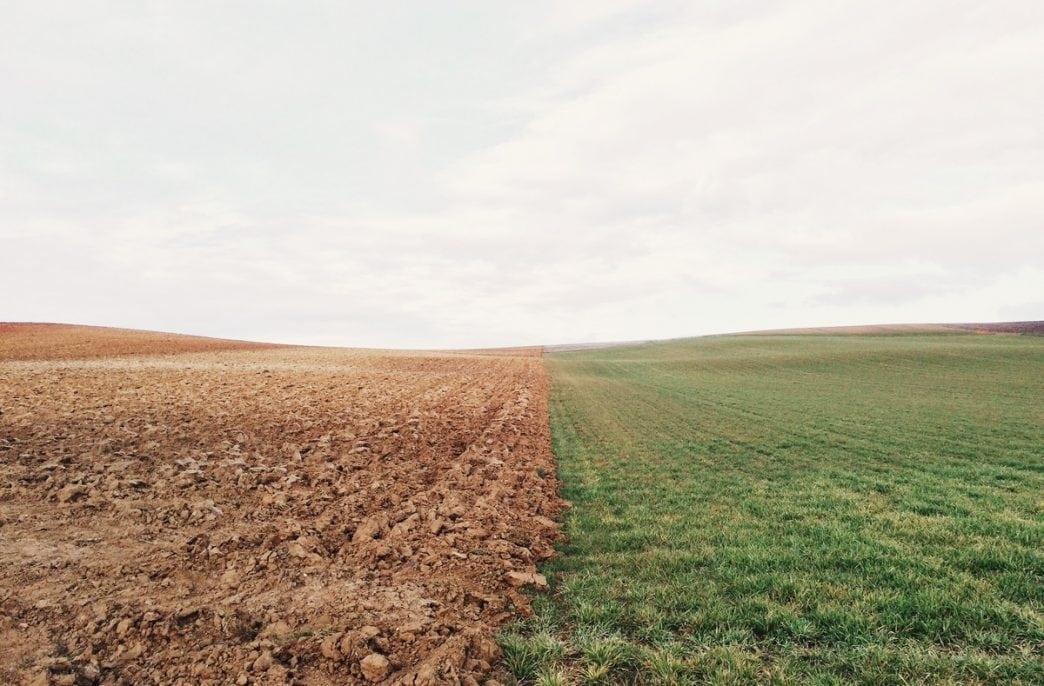 В Чувашии наращиваются закупки агрохимикатов