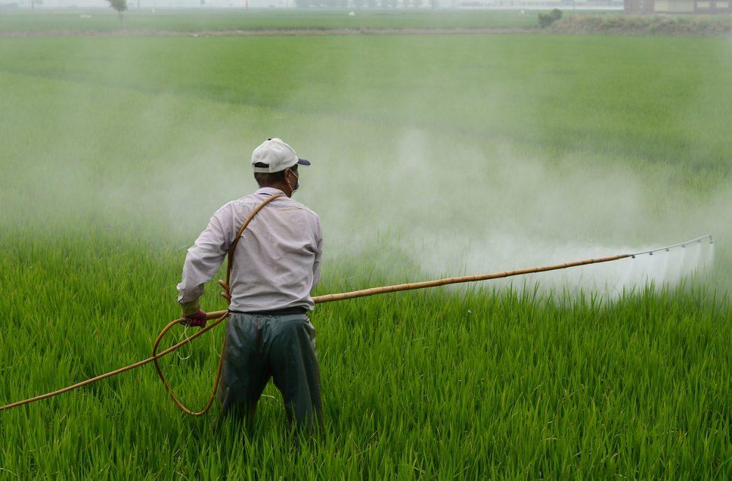 В США будет оспариваться использование смертельно опасного гербицида